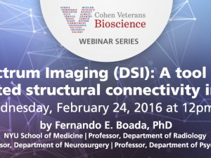 Diffusion Spectrum Imaging (DSI): A tool for unraveling disrupted structural connectivity in PTSD?