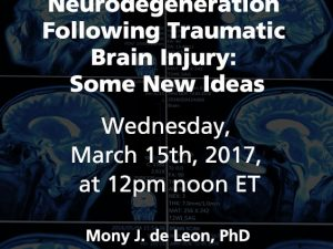 Evaluating Neurodegeneration Following Traumatic Brain Injury: Some New Ideas
