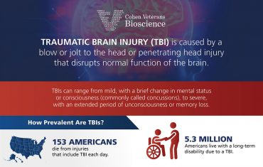 Traumatic Brain Injury Facts - Infographic - Brain Injury Awareness